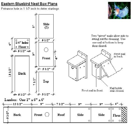 Free Bluebird House Plans | How to Build a Bird House